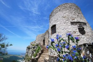 socerb castle koper tours shore excursions